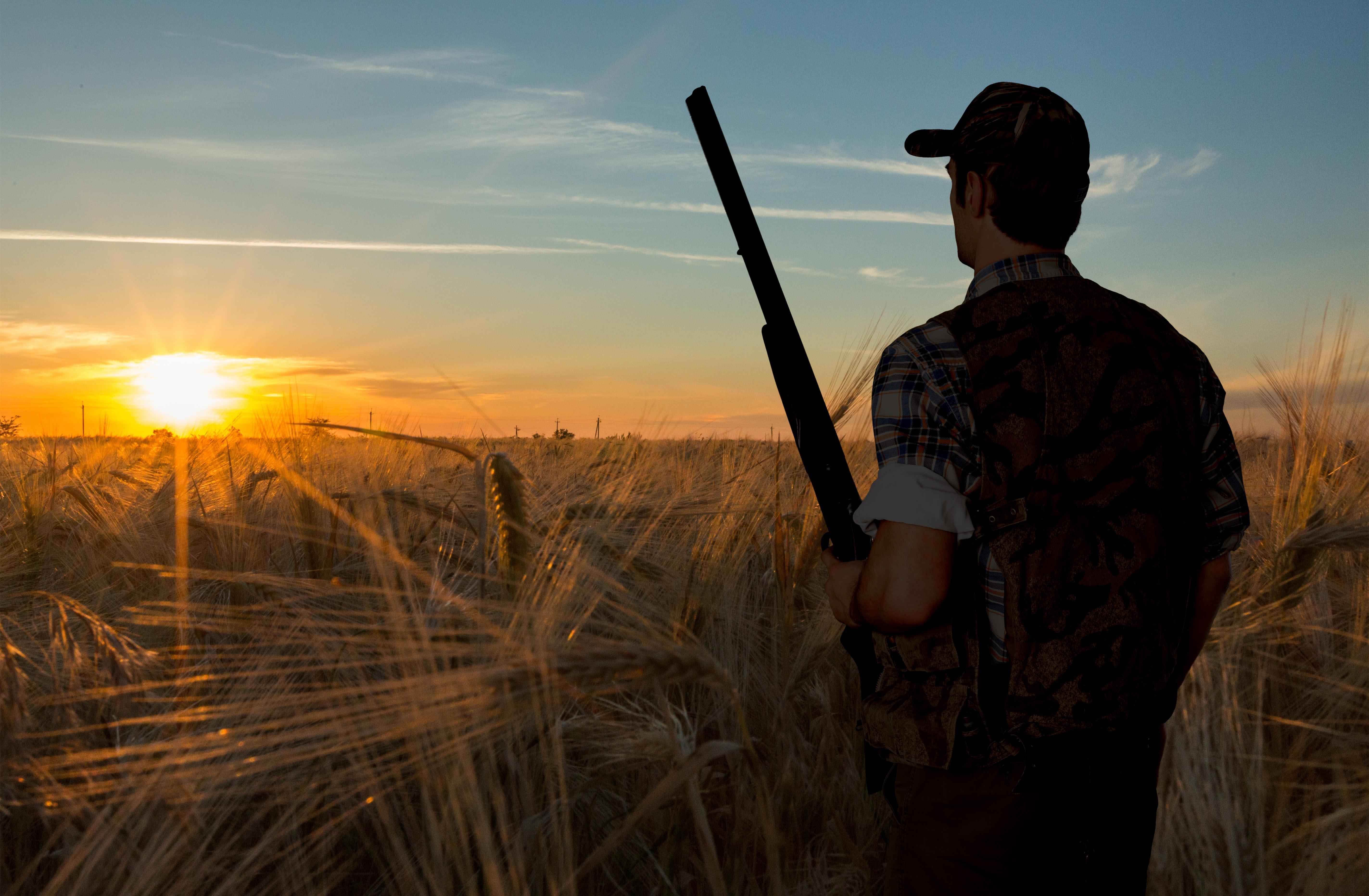 Hunting, Hunter, Shotgun.
